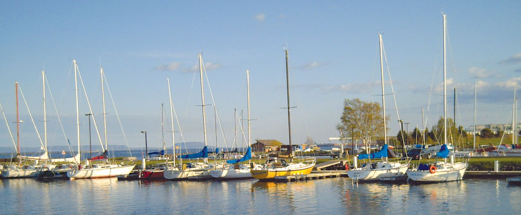 Boats at the thunder bay marina