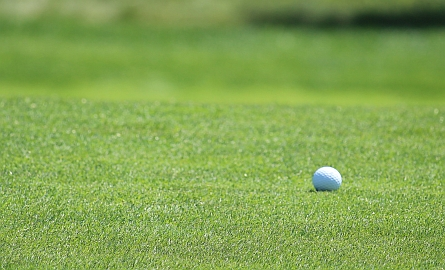 golf ball on a green in thunder bay